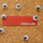 Google Eye Thumbtacks by Zakka Life