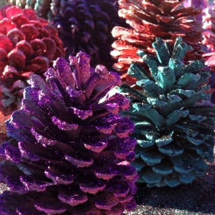 Make Fancy Pinecones