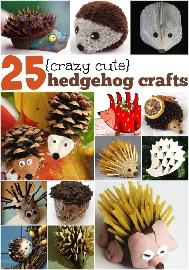 25 cute hedgehog crafts