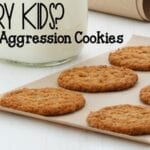Aggression Cookies An Allergy Friendly Oatmeal Cookie Recipe