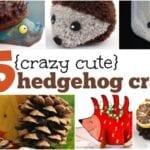 crazy cute hedgehog crafts for kids