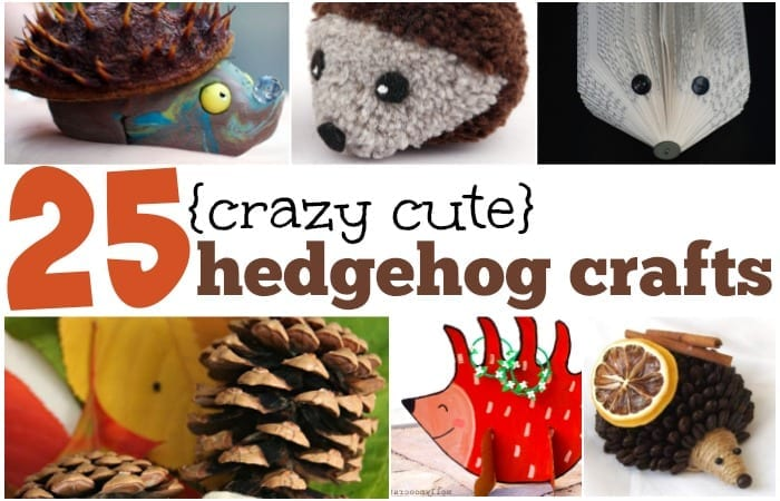 crazy cute hedgehog crafts for kids