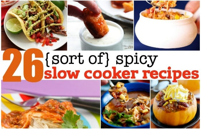 sort of spicy slow cooker recipes