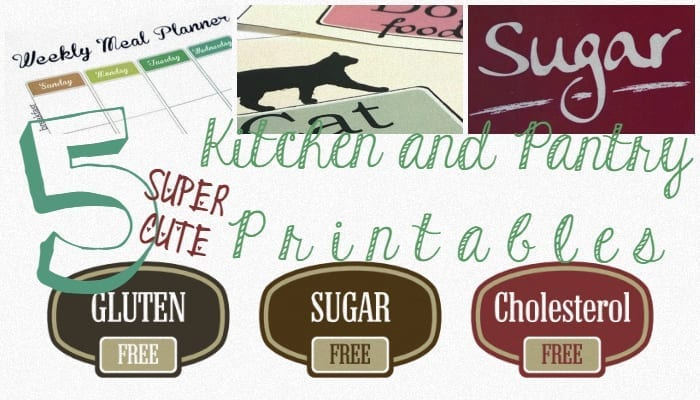 5 super cute kitchen and pantry printables