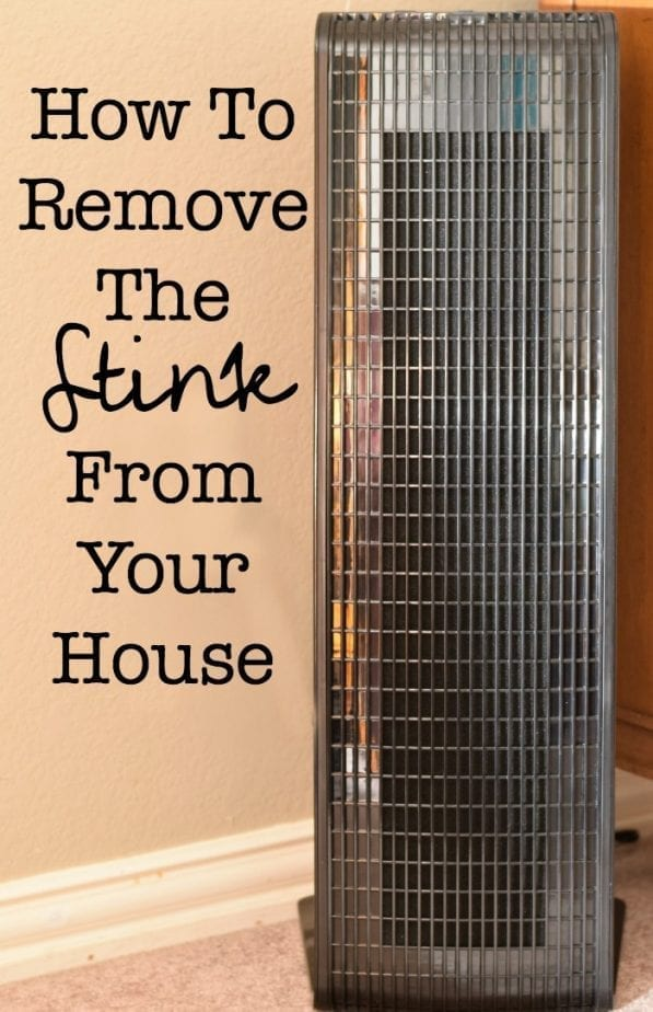 how to remove the stink from your house