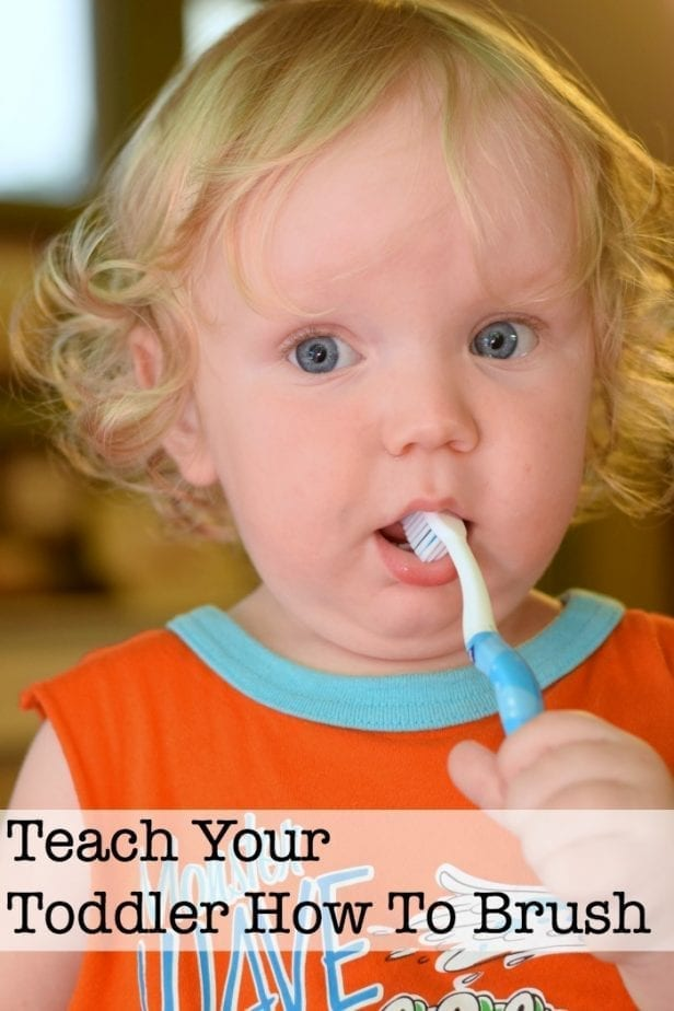 teach toddler to brush