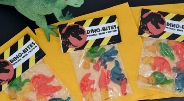 dino bites snack packs