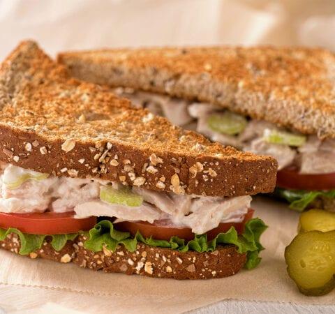 toasted tuna salad sandwich