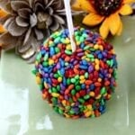 Chocolate Covered Sunflower Seeds Caramel Apples