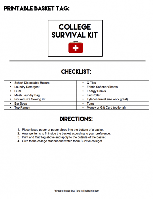 graphic relating to Printable Survival Cards named Create Your Personalized Higher education Survival Package + A No cost Printable