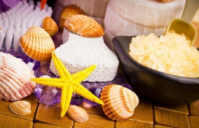 seashell motif
