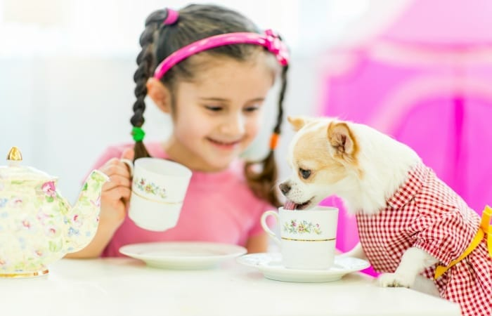 child and dog tea