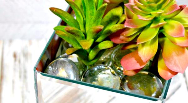mirror planter featured