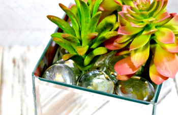 Mirror Planter Box