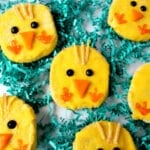 Easter Chick Sugar Cookies