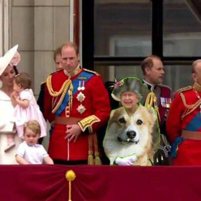 Queen doge