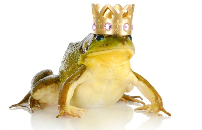 He Loves Me Not: 10 Signs Your Prince Charming Is Actually A Warty Little Toad