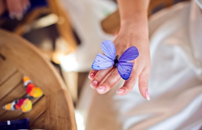 The Butterfly Effect Of Bad Handwriting