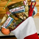 Easy Pet Stocking Stuffers