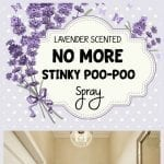 "This lavender scented ""no more stinky poo-poo"" spray is for when you have to 'go', but you don't want anyone to know... 