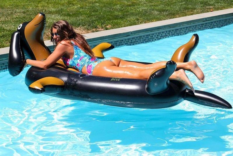weiner dog pool float 4