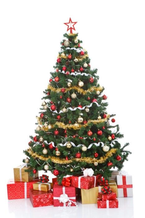 Rob Lowe Keeps His Christmas Tree Alive With A Secret ...