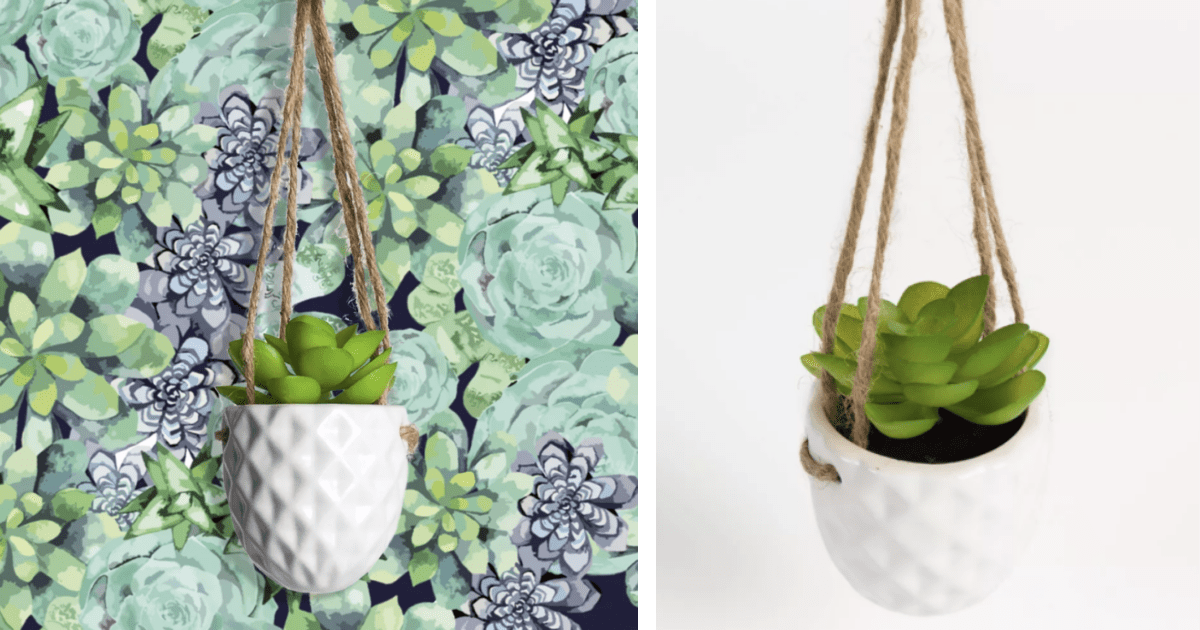 Target Is Selling A Tiny Magnetic Hanging Succulent For Just 6 And I Want One