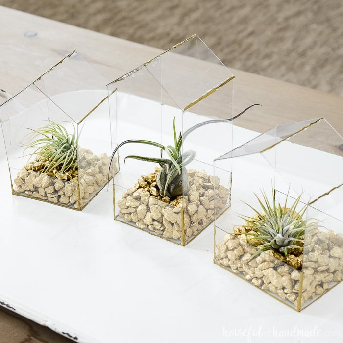 House Shaped Air Plant Holder