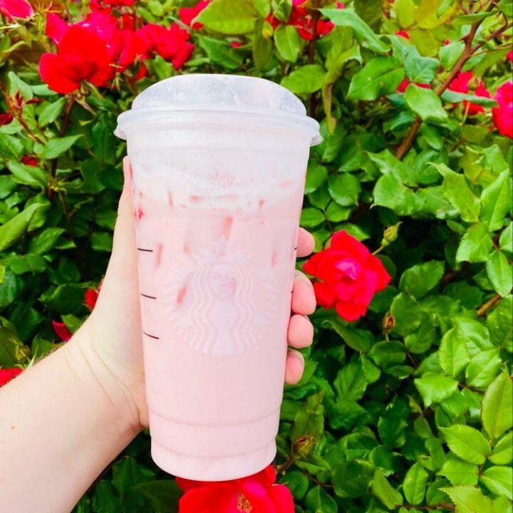 Raspberry Rose Hibiscus Tea